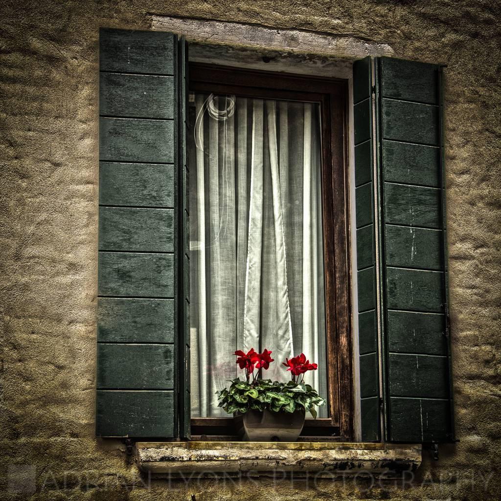 Arches/Doors/Windows